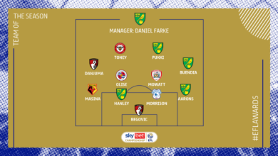57AA4049 5539 4EFB B44A 73BBFF855066 390x220 - Swansea City hero André Ayew excluded in 2020/21 Championship Team of the Season